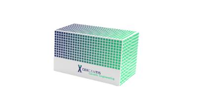 TLA kit for genetic engineering