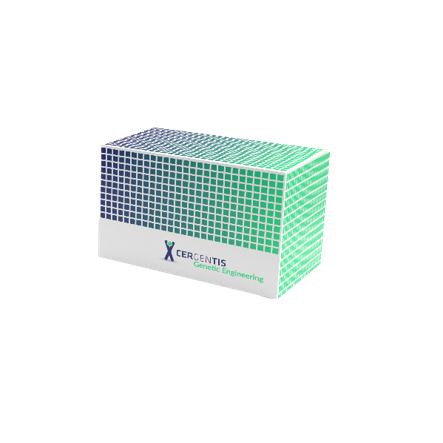 genetic engineering TLA kit