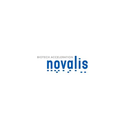 Novalis_klein